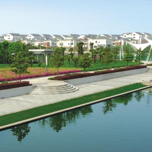 绍兴市大环河绿化工程