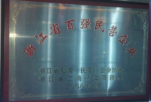 2008浙江省百强民营企业