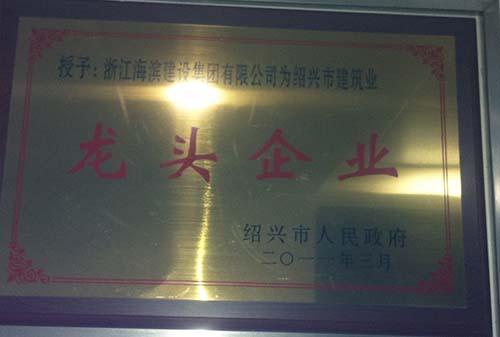 2010绍兴市建筑业龙头企业