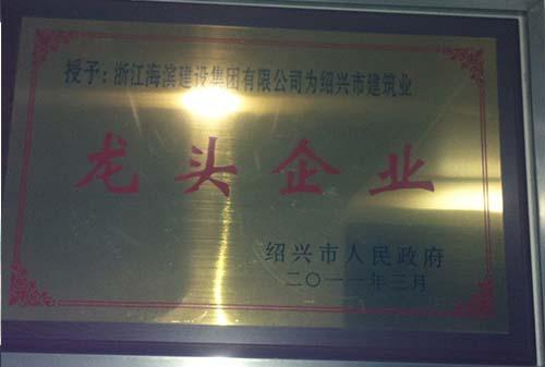2011绍兴龙头企业